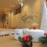 「ソルビン」が贈る、冬に食べるかき氷!クリスマスに向けて「いちごケーキソルビン」が登場! 2016年11月11日(金)より期間・数量限定で発売開始