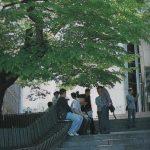 「コラム」韓国の大物俳優!名門大学の演劇関連学科出身者が多い