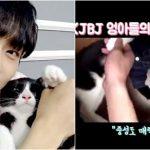 """<トレンドブログ>「JBJ」キム・ヨングクが愛猫を慰める!""""中性でも魅力的だよ"""""""