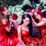 """【Twitterフォロワープレゼント:各公演2組4名様】NINE MUSES Japan 1st Event""""IDENTITY"""" イベント"""