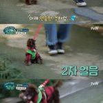 ユン・ウネ、愛犬との初めての散歩に成功「行きたい所に全部行こう」