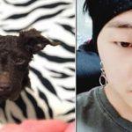 <トレンドブログ>「WINNER」カン・スンユンが捨て犬だったトルを引き取り、ペットについての考えを伝える。