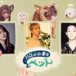 CNBLUE イ・ジョンシン、ユン・ウネがペットライフを大公開 「対話が必要なペット」3月日本初放送!