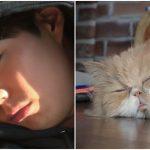 <トレンドブログ>「ヒョリの民泊2」、俳優パク・ボゴムもゆったりとお昼寝タイム♪