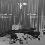 """""""PRISTINの初ユニット""""PRISTIN V、ニューシングルのトラックリストを公開…カムバック間近"""