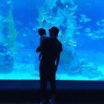イ・ドンゴン&チョ・ユンヒ、娘と水族館に出かけた様子を公開