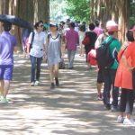 「コラム」連載 康熙奉(カン・ヒボン)のオンジェナ韓流Vol.33「自由な感覚で韓国を見る」