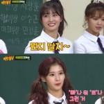 【トピック】「TWICE」モモ&サナ&ミナ、日本人メンバーが1番好きな韓国語は?