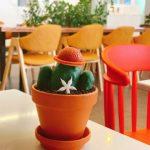 <トレンドブログ>【韓国スイーツ】 明洞でインスタ映えカフェ「デザート研究所」でゆったりtime