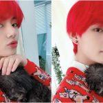 <トレンドブログ>「防弾少年団」V,破格的な真っ赤なヘアースタイルでメリークリスマス♪