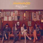 MAMAMOO(ママム)日本2ndシングル「Wind flower -Japanese ver.-」全ジャケット発表! 日本オンリー曲「Sleep Talk」収録。そしてリリース記念イベントも決定!!