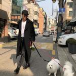 """<トレンドブログ>ヘンリー、子犬とともに余裕がある散歩..""""美しい日"""""""