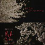 <トレンドブログ>ハン・ジミン×チョン・へインの新ドラマ「春の夜」の1次ティーザーが公開!