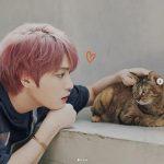 """キム・ジェジュン、猫とアイコンタクトするイケメン…""""ニャン、可愛くて、ワン、可愛い"""""""