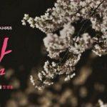 <トレンドブログ>「春の夜」ハン・ジミン-チョン・ヘイン「これも縁なら縁なのに、私たち友達になりましょう」