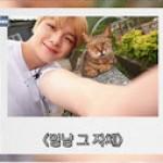 カン・ダニエル、台北で猫と戯れる…ランタンに綴った本心は? 公式トラベルブログ「Colorful Daniel」更新中