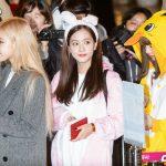 <トレンドブログ>【空港写真】「BLACKPINK」超かわいいウサギとアヒルが空港に現れた!!