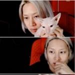 ヒチョル(SUPER JUNIOR)、故ソルリの愛猫育てる…「ユ・ジェソク言及、ありがたくかっこよかった」