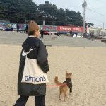 <トレンドブログ>「AOA」ソリョン、海辺の砂浜で子犬と幸せな日常..誰が誰と遊んであげてるのかな?