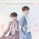 NTB JAEHA(ジェハ)&HYOBIN(ヒョビン)ユニットライブ「Bloom in JAPAN」 開催決定‼