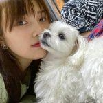 <トレンドブログ>「Red Velvet」ジョイ、子犬とじゃれる可愛いショットを公開…ラブリーの結晶体☆