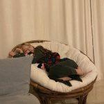 <トレンドブログ>「AOA」ジミン、眠れるおやゆび姫のようなビジュアル…ラブリーな日常