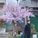 """イ・ミンホ、新型コロナに3億寄付と暖かい応援…""""1日も早く春が来ることを"""""""