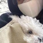 <トレンドブログ>「東方神起」チャンミン、伴侶犬を抱いて目だけ見えてもイケメン!!