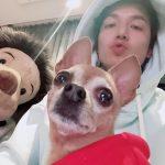"""俳優イ・ミンホ、愛犬と共に新しいドラマのPR…""""ついに始まる"""""""