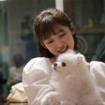 <トレンドブログ>「OH MY GIRL」アリン、「世の中に悪い犬はいない」に出演した理由は?…犬のうつ病