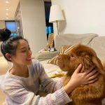 <トレンドブログ>「AOA」ソリョン、今日も美しい限度超過…伴侶犬と愛らしいアイコンタクト