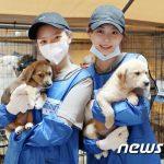 <トレンドブログ>【フォト】遺棄動物奉仕活動に参加した「TWICE」ツウィ、ジョンヨン、女優コン・スンヨン、コ・ウォンヒ