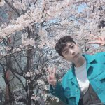 """2PMウヨン、眩しいビジュアル公開…""""今日は花の写真だけ?"""""""
