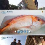 ユ・ヘジン、ついに大型真鯛を釣る…チャ・スンウォンとソン・ホジュンは豆腐作りに成功=「三食ごはん漁村編5」
