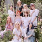 【公式】「TWICE」の「MORE & MORE」、累計売上げ枚数56万3千枚を突破=韓国ガールズグループ最多
