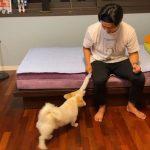 【トピック】「2PM」テギョン、愛犬と遊ぶ楽しい日常を公開