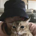 カン・ダニエル、目だけ見えてもイケメン...愛猫とかわいいツーショット!!