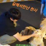 """歌手ソン・シギョン、犬好きの優しい姿公開…""""道で会った天使"""""""