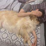 """CNBLUEイ・ジョンシン、愛犬との穏やかな日常…""""かわいい子、誰の子、私の子❤️"""""""