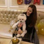 """女優パク・ミニョン、愛犬の誕生日パーティーで伝えた近況""""途方もなく会いたい"""""""