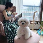 """女優キム・スミの嫁、ソ・ヒョリム 夫のチョン・ミョンホ氏が撮った?…""""娘にミルクをあげるママ"""""""
