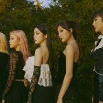 Red Velvet、大好評の期間限定ライブ映像を元に、プレイリスト『Red Velvet BEST LIVE RANKING』公開!