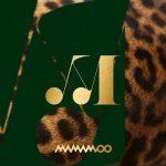信じて聴ける「MAMAMOO」が来る、11月3日に今年初の完全体カムバックが確定