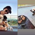 女優ソン・ユリ、夫アン・ソンヒョンと高級ホテルで旅行中?肉とワインまで甘い新婚夫婦