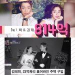 韓国芸能界の不動産・土地富豪…1位RAIN(ピ)-キム・テヒ夫妻から3位チョン・ジヒョン、5位チャン・グンソクまで