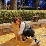 <トレンドブログ>「9MUSES」出身ギョンリ、恋人チョン・ジヌンも嫉妬⁈…愛犬への限りない愛情