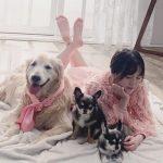 女優ク・ヘソン、愛犬の最後を守りながら家族写真を撮影