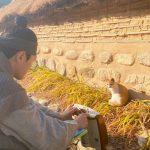 キム・ミョンス(INFINITEエル)、ノラ猫保護センターに1000万ウォン寄付…温かいニュース