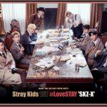 【公式】「Stray Kids」、2月30日に初のファンミーティング開催…全世界ファンと会う