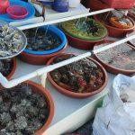 <トレンドブログ>韓国で牡蠣はこう食べる!日本でも真似してほしい食べ方【韓国】